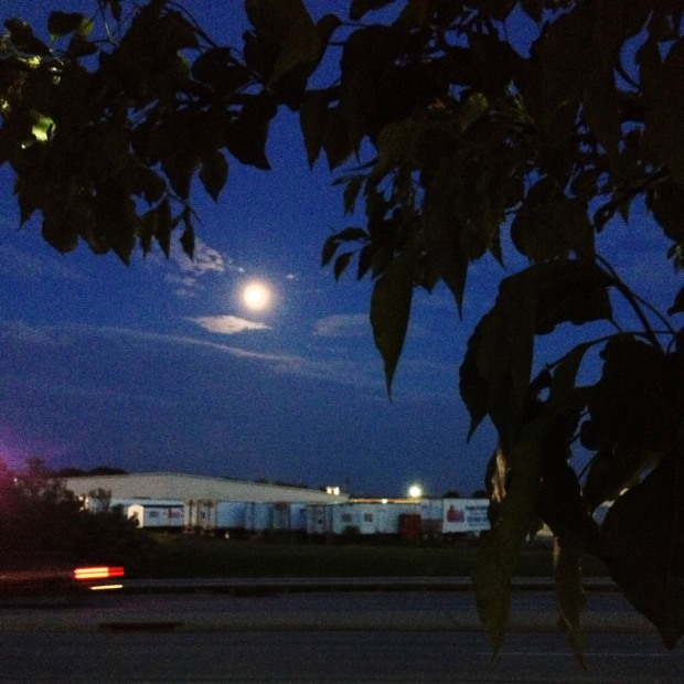 moonrise-blueash-5-13-14