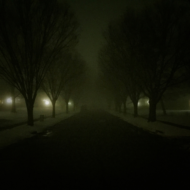 foggy night, snow