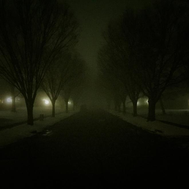 foggy night, snow