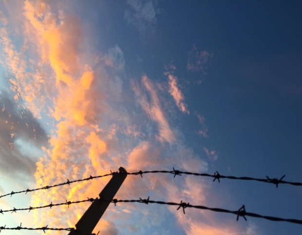 twilight sky and barbed wire